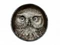 Owl Cartoons